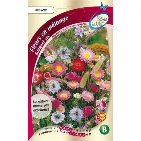 Graines pour bouquet fleurs séchées