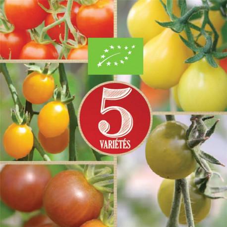 Mélange bio de 5 variétés de tomates cerises