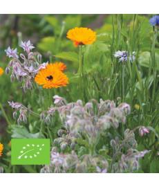 Mélange de fleurs comestibles bio