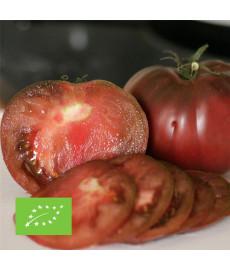 Tomate noire russe bio