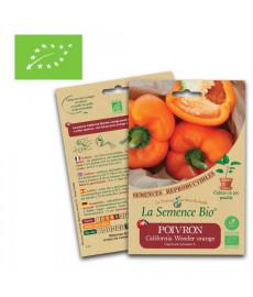 Graines poivron California Wonder orange bio