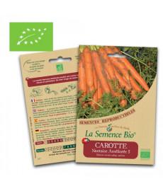 Graines de carotte nantaise améliorée bio
