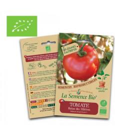 Graines bio de tomate reine des hatives