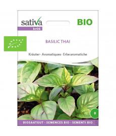 Basilic thaï  graines bio