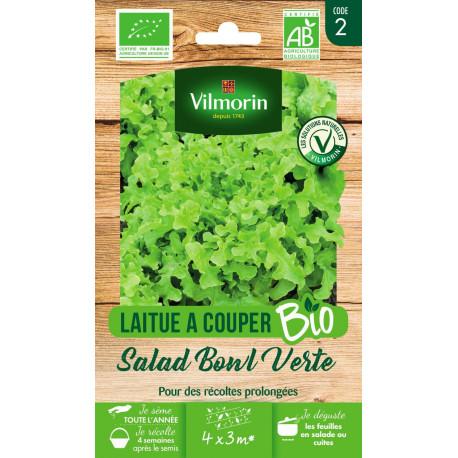 Graines bio de salade à couper verte salad bowl