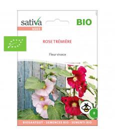 Graines bio de rose trémière