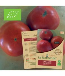 Tomate charnue de Huy graines à semer