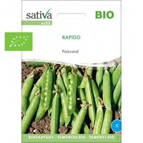 Pois à écosser grains ronds Rapido graines à semer