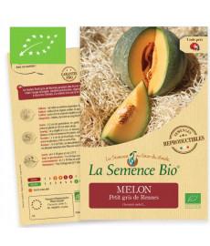 Graines bio à semer de Melon petit Gris de Rennes