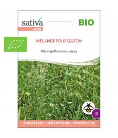 Graines bio en mélange de fleurs sauvages pour gazon