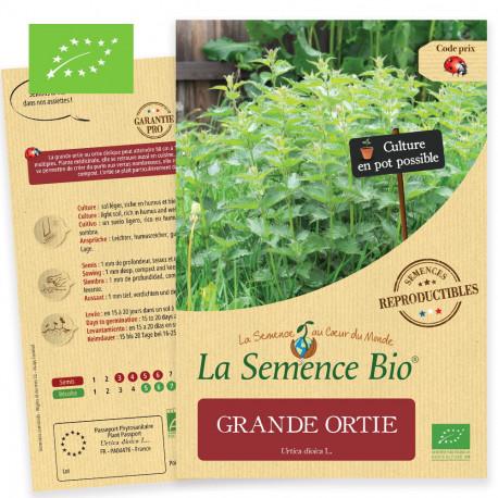 Graines bio à semer de grande ortie ou ortie dioique