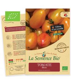 Graines bio à semer de mini Tomate blush