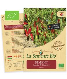 Graines bio à semer de Piment Sucette de Provence
