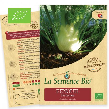 Graines à semer de fenouil perfection bio