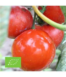 Graines bio de tomate Joie de la table