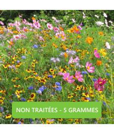 Mélange de graines de fleurs Miel et papillons