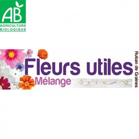 Mélange de graines de fleurs utiles bio