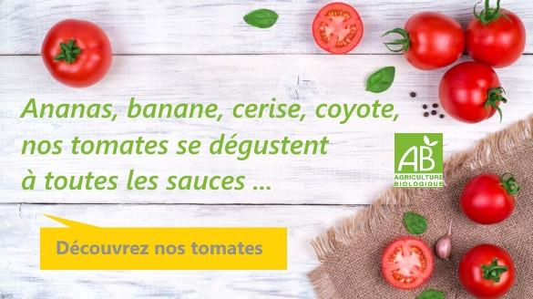 graines-tomates-bio